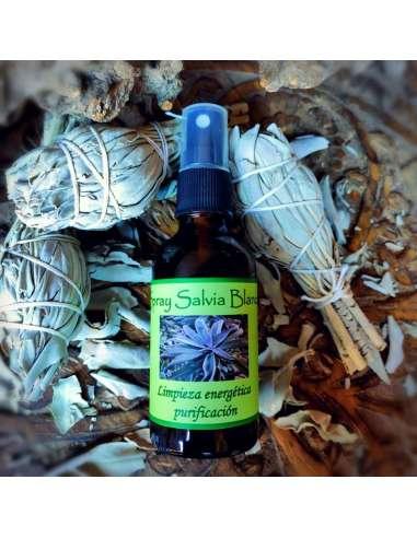 Extracto de Salvia Blanca